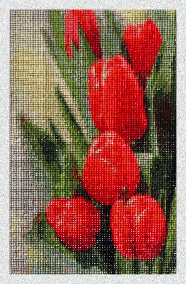 Tulipani Rossi e-commerce per Diamond Painting Italia